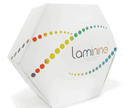 Laminine